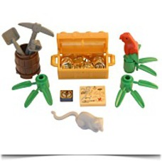 Pirates Gold Treasure Accessories