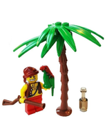 Pirate Minifigure And Pirates Building